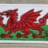 Welsh Contact Patch Kit